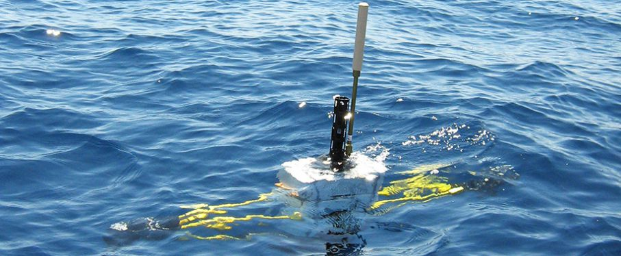 First deployment of the ProVal float